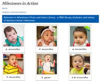 Milestones in Action website